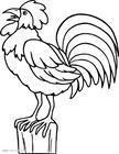 山地果园放养土鸡创业计划书