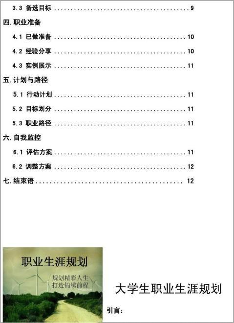 大学生职业生涯规划大赛计划书