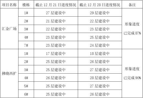20xx年12月29日工程简报