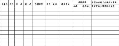 村主任业绩考核表