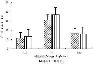 不同主枝开张角度杏树冠层内产量和品质差异分析