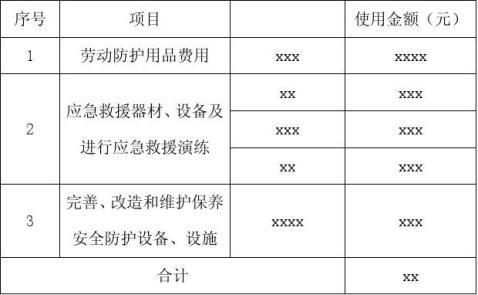 xxxx年安全生产费用提取和使用情况报告